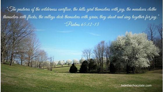 _The pastures of the wilderness overflow, the hills gird themselves with joy, the meadows clothe thems